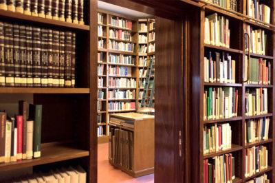 aracnofilia nostre pubblicazioni scientifiche evidenza