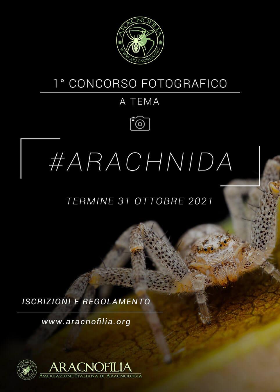locandina concorso fotografico aracnofilia 2021